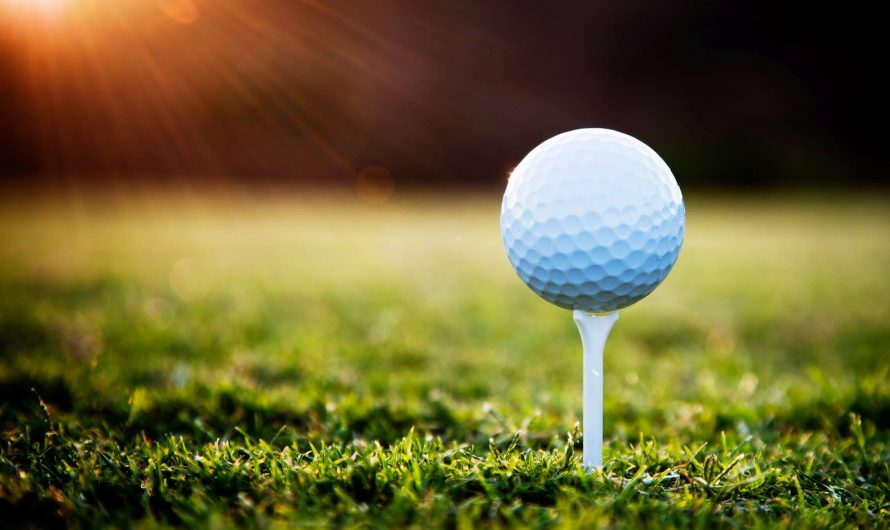 How a Golf Shop Owner Can Help You Find Golf Equipment